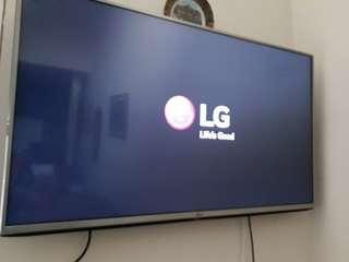 """LG LED Televisi 43"""""""