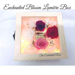 Enchanted Bloom Lumiere Light Box - Preserved roses & assortment of dried flowers which last for years