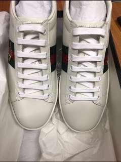 Gucci sneaker 36/37碼 100%全新 真!