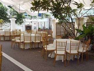 Rental of Low grade Tiffany chairs