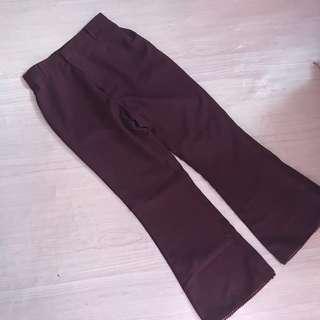 BERN MAROON BOOTCUT PANTS