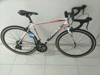 700C Trinx Tempo 2.0 Racer