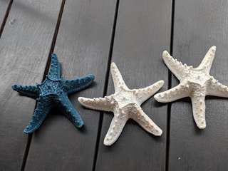 Ceramic starfish Deco