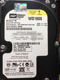 Western Digital Hard Disk Sata HardDrive 160GB