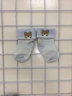 Kaos kaki bear
