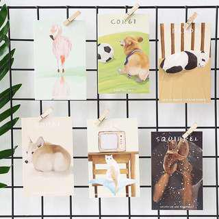 (PO) Animal Snapshot Postcards/ Post Cards