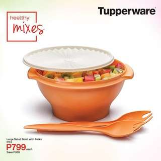 Tupperware Salad Bowl with Forks