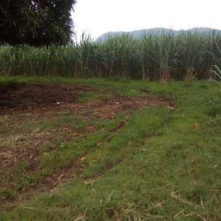 200 hectares Lot in Nasugbu