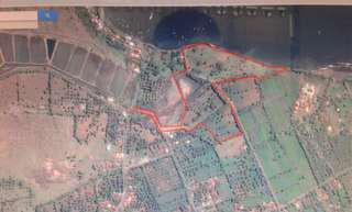 Dijual Tanah Los Pantai Buleleng Bali Luas 4 Hektar