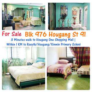 Blk 976 Hougang St 91 (3 mins walk to Hougang One Shopping Mall)