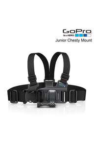 99% new GoPro junior chesty mount