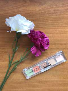 All Round Concealer by Catrice