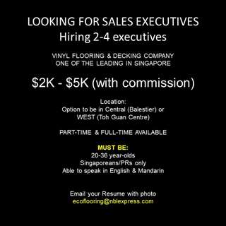 Looking for Sales Executives