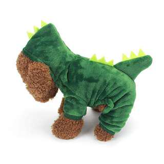 Dog dinosaur clothing
