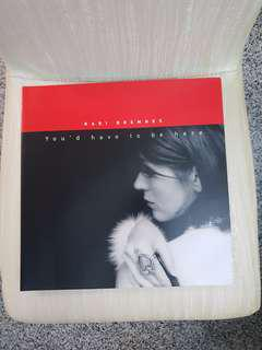 Kari Bremnes You'd have to be here Vinyl Record LP