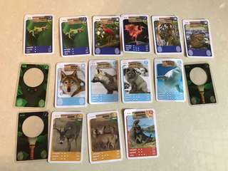 Fairprice Animals cards