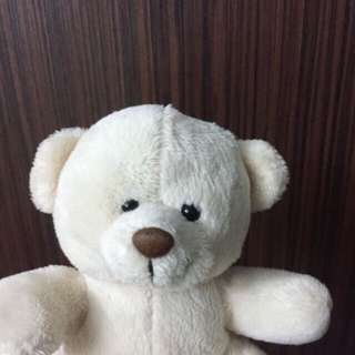 Mini White Teddy