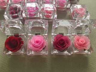 Ring box preserved roses