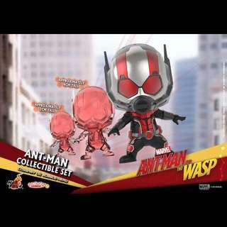 🚚 Hot Toys cosbaby蟻人
