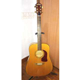 Washburn Acoustic Guitar (Solid Spruce + Solid Maple B/S)