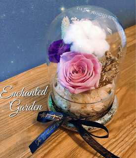 💐Enchanted Garden: Preserved Roses & assortment of dried flowers that doesn't wilt & last for years without sunlight & watering.