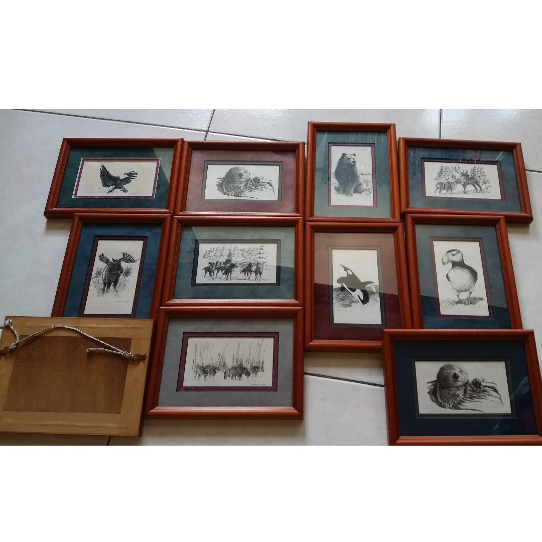 10 photo frames together with hand-drawn animals in Alaska ...
