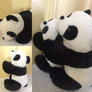 New Stuffed Toys for Sale!