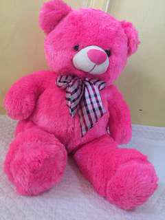 Pink Big Teddy Bear