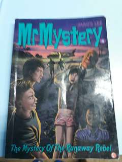 Mr Mystery (The Mystery Of The Runaway Rebel)