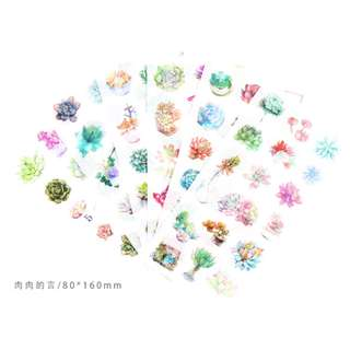 Succulents Stickers - 6 sheets