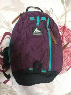 Gregory Backpack 背囊 背包