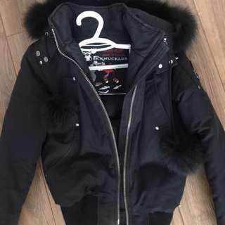 Moose Knuckle Winter Jacket