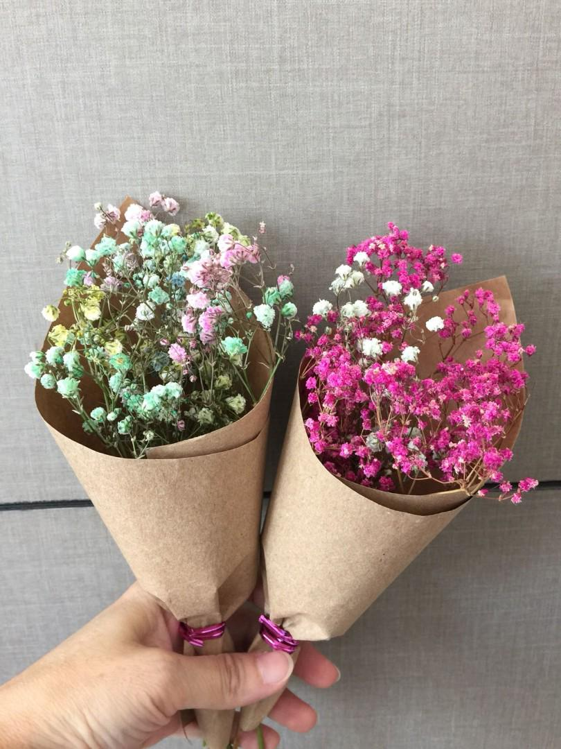 Baby S Breath Small Bouquet Off 77 Buy