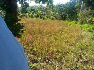 Lot in Calaca Batangas