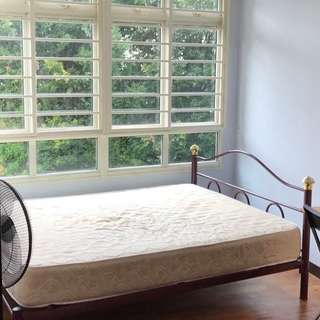 Queen-size bed frame only