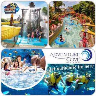 Adventure Cove adventure cove adventure cove