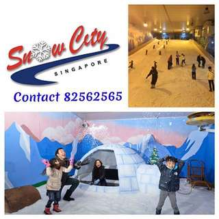 Snow City                            Snow city snow city