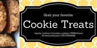 Cookie Treats chocolate chip oatmeal lactation cookies