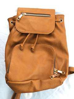 Original Aldo Backpack