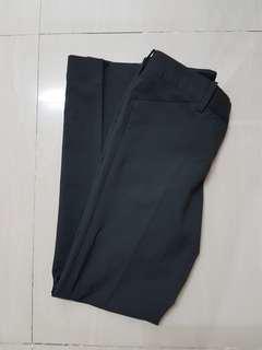 New Executive Pants
