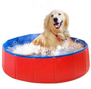 [Instock] BN Free delivery Pet tub