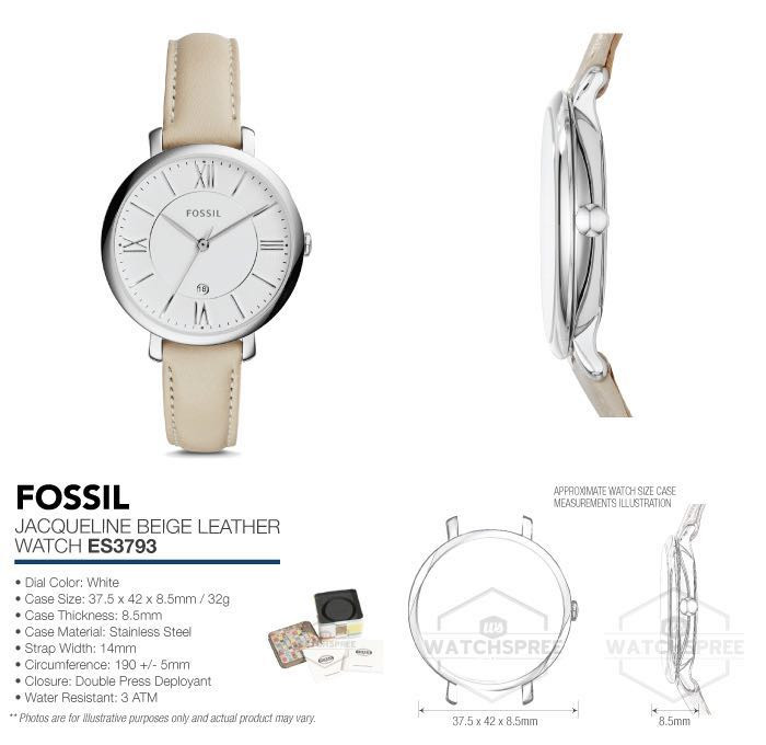 ea7304e8ebb FREE DELIVERY - Fossil Womens ES3793 Jacqueline Stainless Steel ...