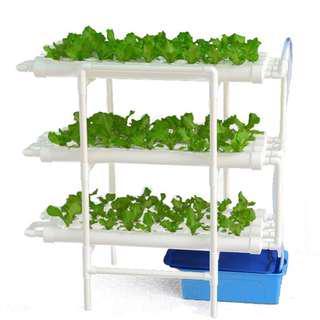 🚚 DIY Vertical indoor Hydroponic grow system