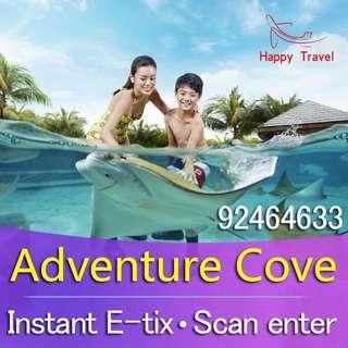 Adventure Cove Adventure cove Adventure cove Adventure cove Adventure cove Adventure cove Adventure cove Adventure Cove Adventure Cove Adventure Cove Adventure Cove Adventure Cove Adventure Cove