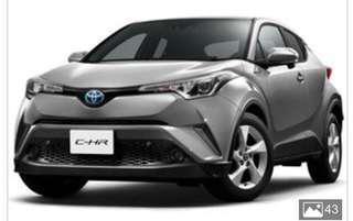 Toyota CHR hybrid (Used)