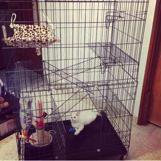 Sangkar Kucing 3 tingkat