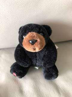 Black bear Maplefoot babies collectables