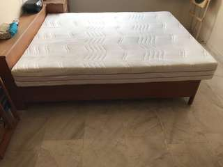 BRAND NEW European Bedding Mattress