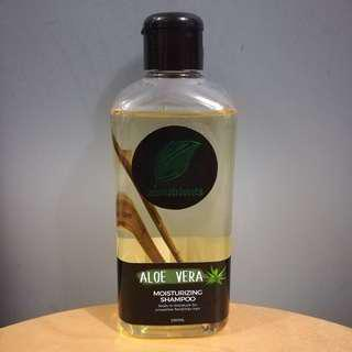 Zenutrients Aloe Vera Moisturizing Shampoo (250mL, 85% full)