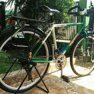 Sepeda taiwan decal federal